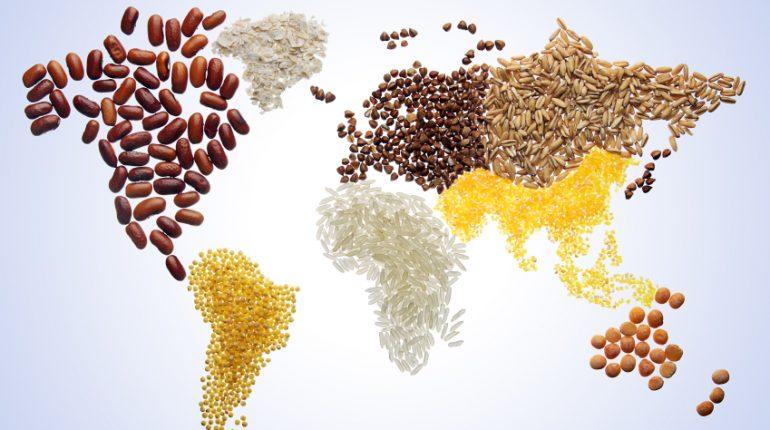 Dieta para la Salud del Planeta